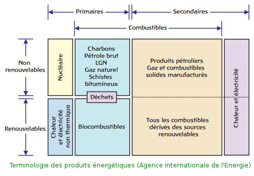 IEA_nature_energie